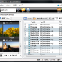 FileMany 64-bit 2.1.8.6 screenshot