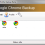 Google Chrome Backup 1.8.0.141 screenshot