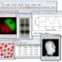 ImageJ 1.53m screenshot
