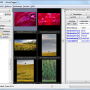 Portable JPhotoTagger 0.44.8 screenshot