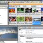 ThumbsPlus 10.SP2-4015 screenshot