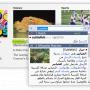 VerbAce-Pro 2.5.3 screenshot